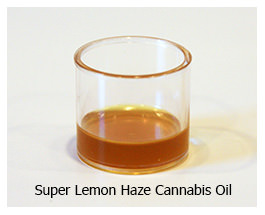 super lemon haze cannabis oil